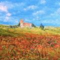 Poppyfields