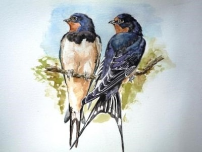 Two swallows don't make a summer.