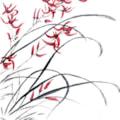 Oriental Grass