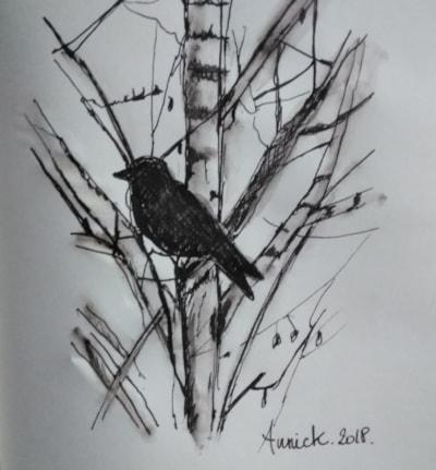 Study of a silver birch tree.