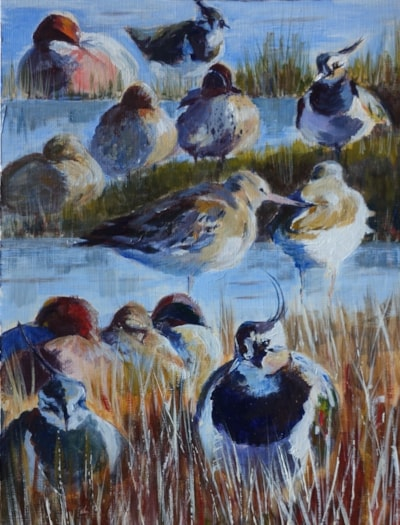 Ducks and waders - acrylic sketch