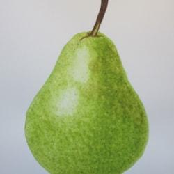 William's Pear