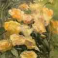 Roses (plein air oil)