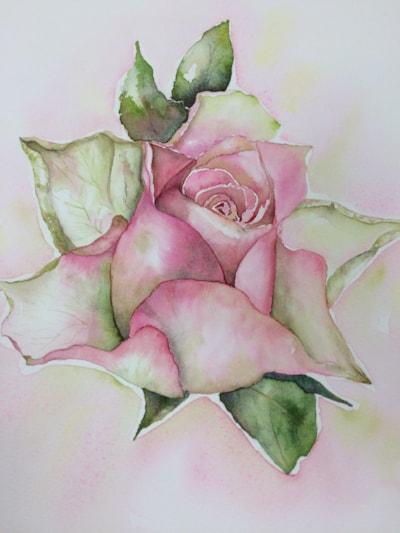 Supermarket Rose