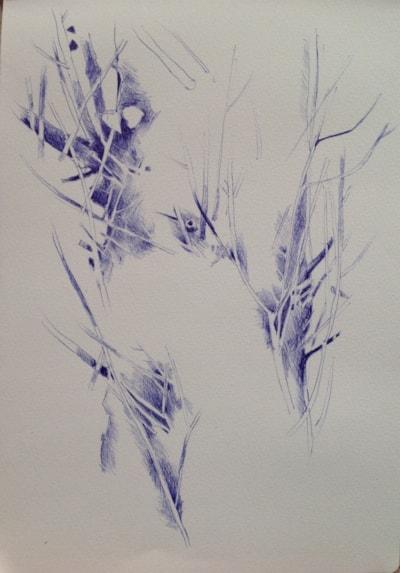 Winter Biro Sketch