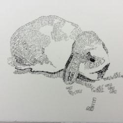 Bertie the Lop Eared Rabbit