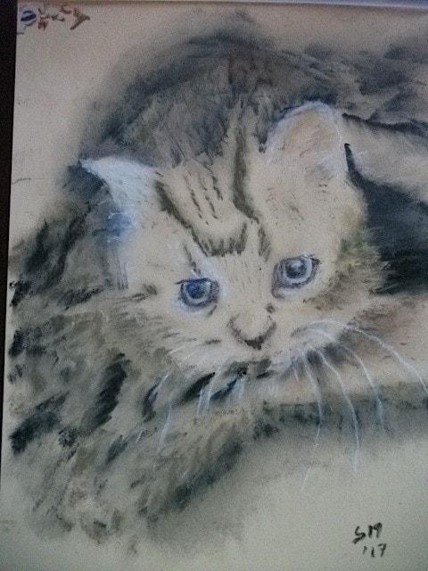 Arty as kitten