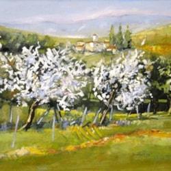 ciliegi in fiore (cherry blossoms) oil cm 50 x 60 Leonetta Rossi Painter