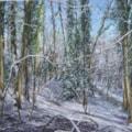 Cuckoo Woods 4
