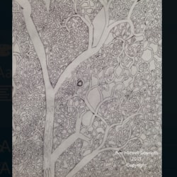 Ash Tree labyrinth ( passageway detail)