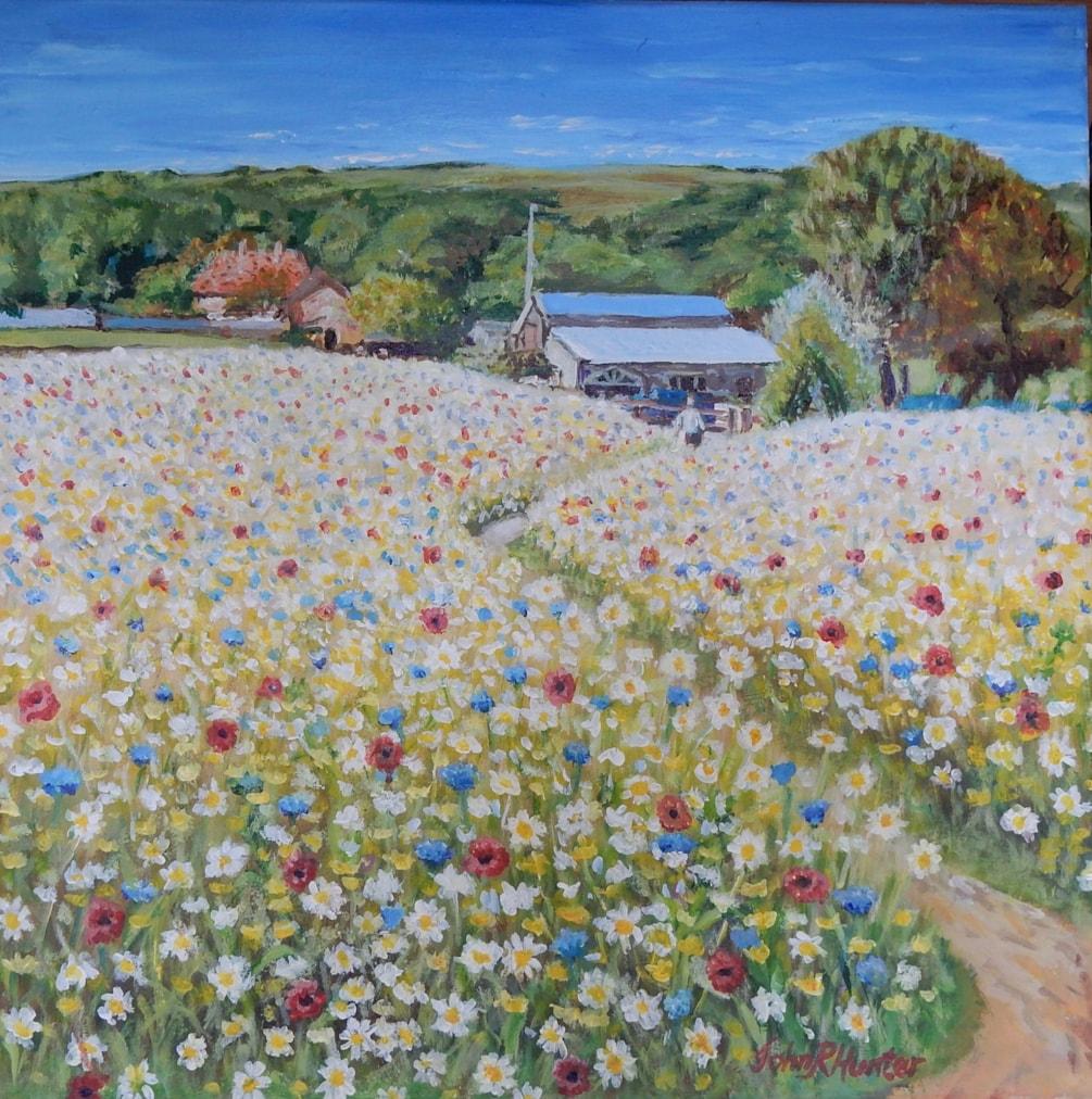 Garlic Farm Wildflowers Isle of Wight 2019