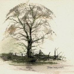 "Simple Tree-study  6"" x 6"" Approx. (15cm x 15cm)"