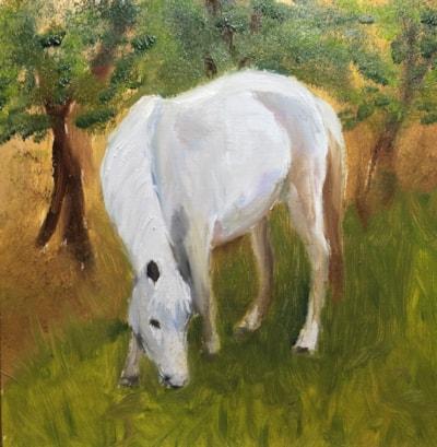 E for Equine