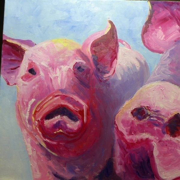 Nosey Pigs