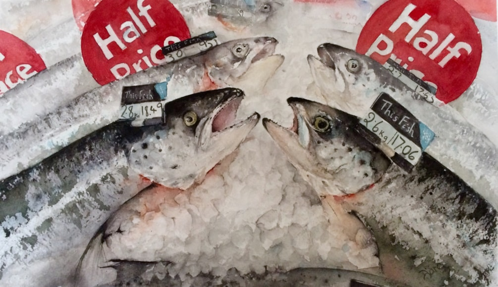 Offers on fish counter