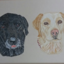 Missie and Daisy 1