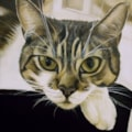 """A painting for Lila-Pearl 'Mittens' (2016) 11.5"""" x 16.5"""" Oil and acrylic on canvas."""