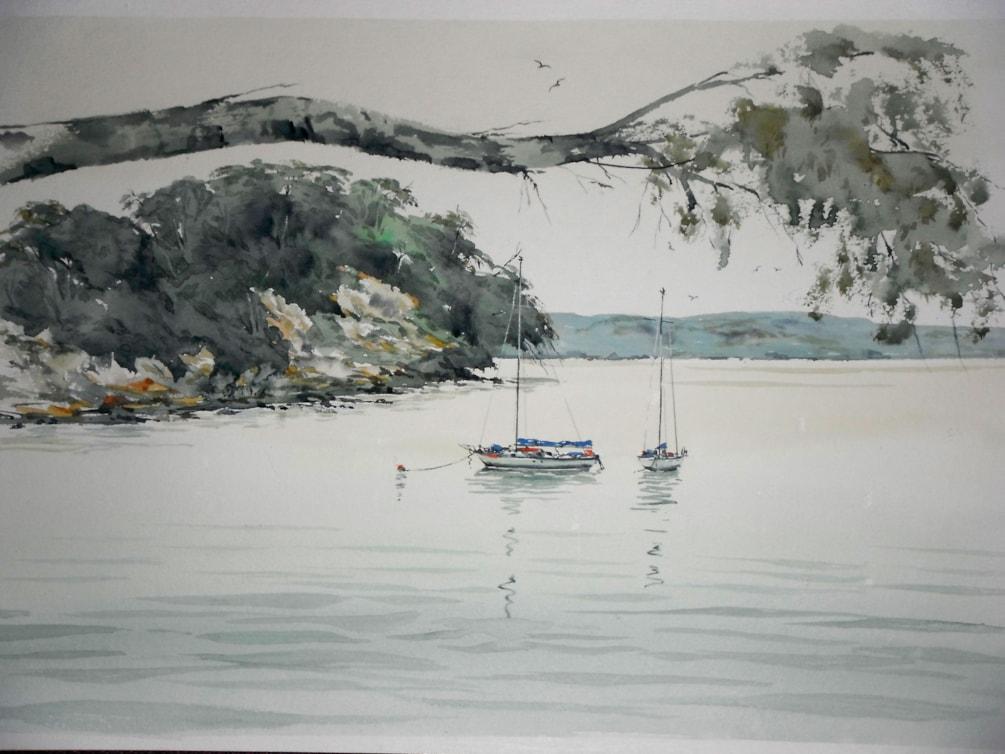 Waiheke Island. Auckland harbour
