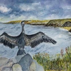 Cormorant Rock