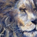 Lion in Blue and Gold.