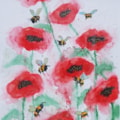 The poppies and the bees