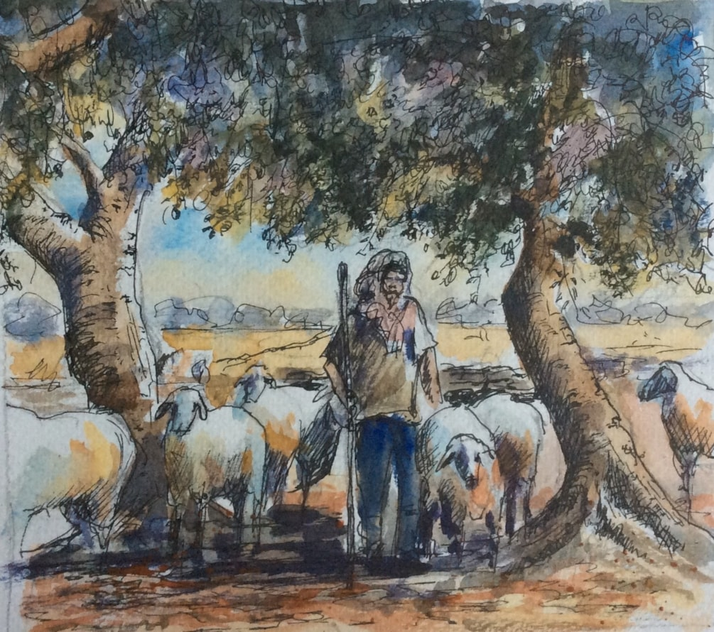Amongst the Olive Trees