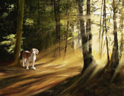 His Morning Walk