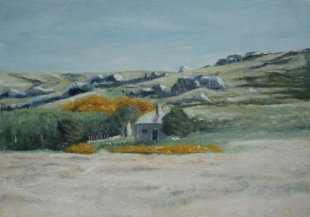 Falklands lanscape near Moody Brook