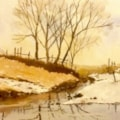 Winter Reflections (after Ron Ranson).