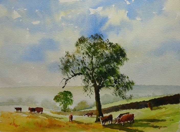 A summer's day in Dorset