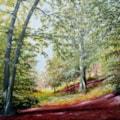 The Ridges Finchampstead