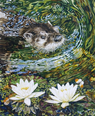 Otter coming to a pond near you