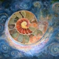 Infinite Ammonite