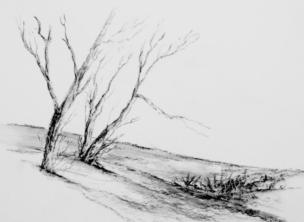 CHARCOAL SKETCH (2)