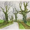Buckinghamshire lane