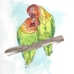 LoveBirds - Watercolour 2018