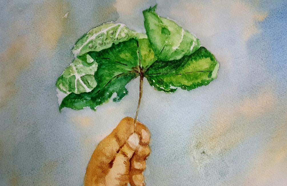 leaf,hand and sky