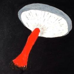 Sophisticated mushroom
