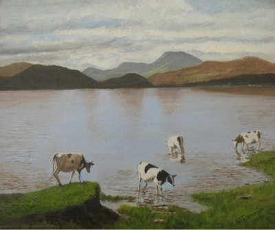 cattle on Loch Lomand