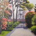 Kilmacurragh Gardens, Co. Wicklow