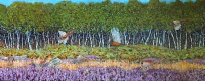 Pheasants Over The Heather.