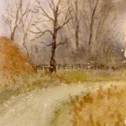 Winter, by the canal, Daisy Nook.