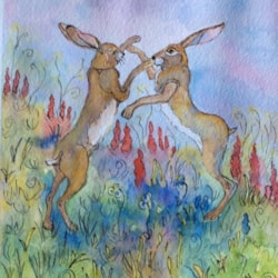 Rumble in the Flower Meadow