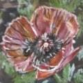 Flower 3 Miniature