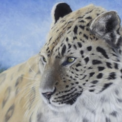 carls photo amur .leopard edited for Painters online