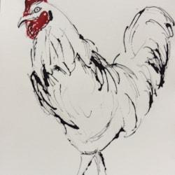 Greek Rooster