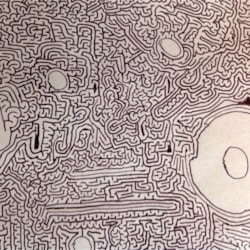 Moon labyrinth (passageway detail)