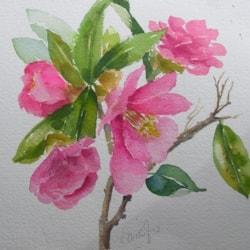 Free hand painting