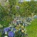 Dory's Garden