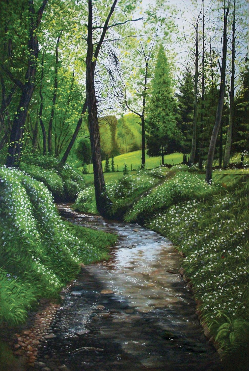 Bodenham Arboretum - Bodenham Wood